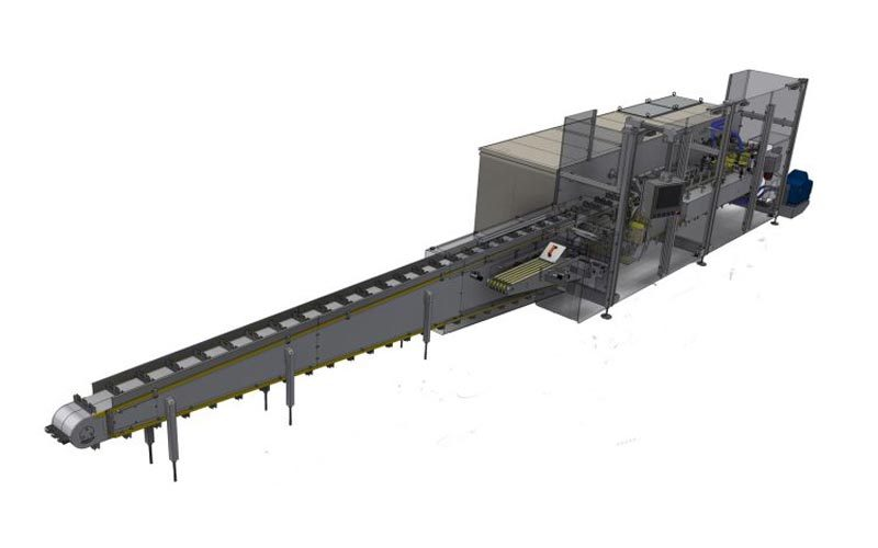 Secondary Packaging & Robotic Solutions